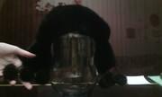 Норковая шапка, чёрная.