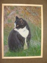Картина с красивым чёрным котиком