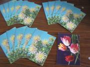 16 открыток Цветы 1977 г